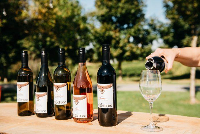 Singltree Winery Abbotsford tasting